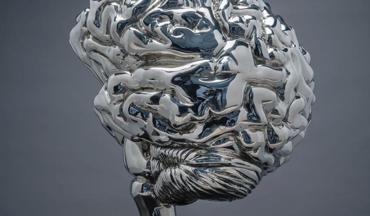 Brain - Szymon Oltarzewski