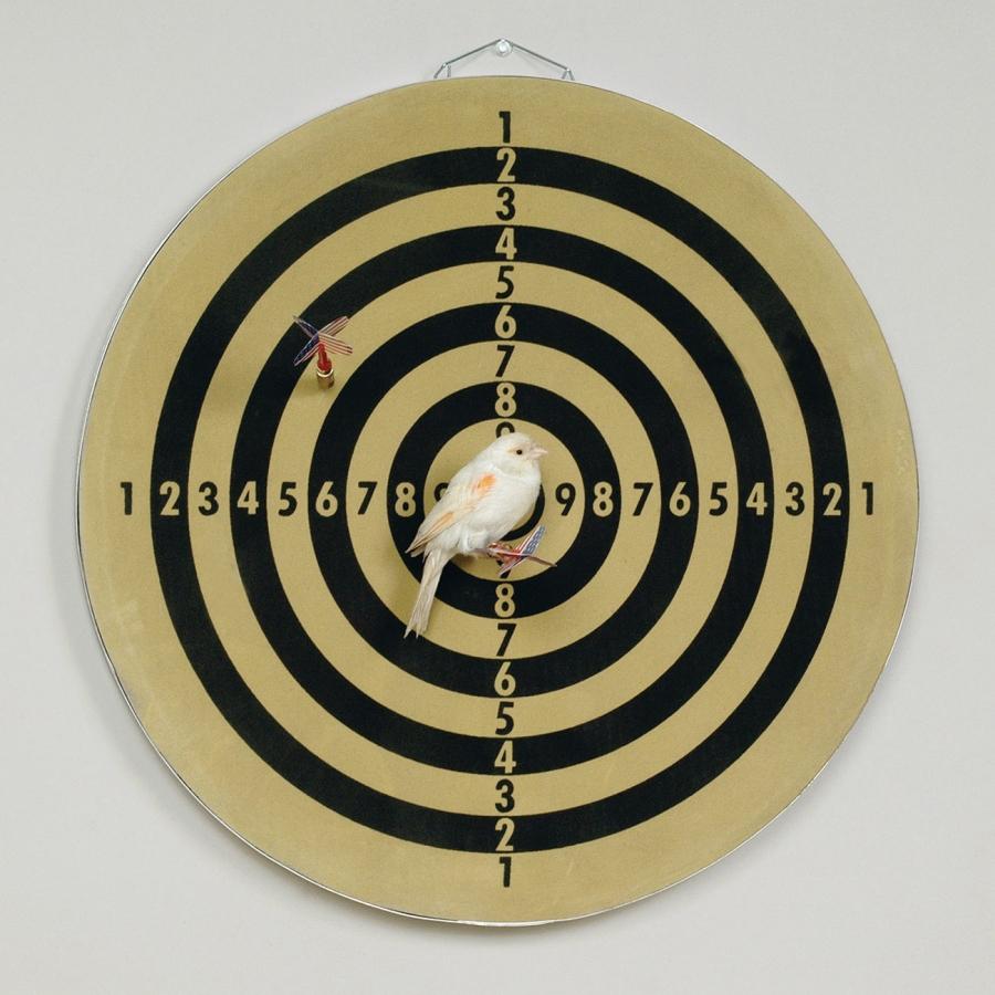Target N.1 - Robert Gligorov