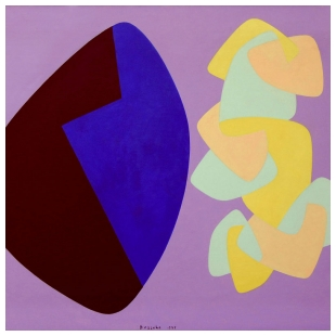 Funzione di Forma Concreta - Angelo Bozzola