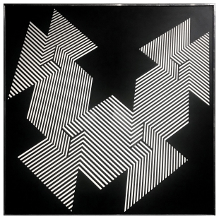 Psicoplastica Nera -  Franco Grignani